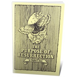 The Purpose of Resurrection