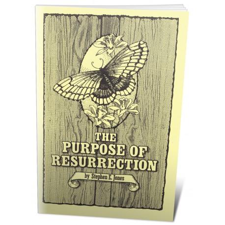 The Purpose of Resurrection